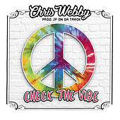 Check The Vibe by Chris Webby