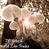 78 Natural World Zen Tracks by Meditation Music Zone