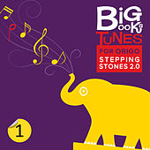 Origo Big Books Tunes: Mathematics Grade 1 by Coles Whalen