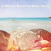 75 Natural Relaxation Audio Tracks by Canciones De Cuna