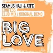Confess by Seamus Haji