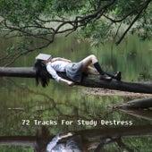 72 Tracks For Study Destress de Dormir