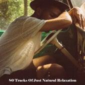 80 Tracks Of Just Natural Relaxation de Dormir