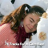74 Tracks For A Calm Rest by Nature Sounds Nature Music