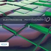 Elektronische Musikaspekte, Vol. 10 by Various Artists