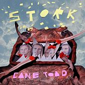 Cane Toad by Stork