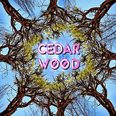 See The Wood, Vol. 1 by Various Artists