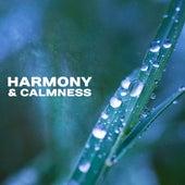 Harmony & Calmness – Deep Meditation, Training Yoga, Chakra, Buddhist Calmness, Nature Sounds by White Noise Meditation (1)
