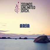 Aria by Sounds Unlimited Orchestra