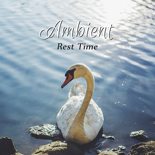 Ambient Rest Time – New Age 2017, Stress Relief, Rest, Nature Sounds, Relaxing Music, Anti-Stress Music de The Rest