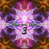 Shamanic Tribes, Vol. 3 by Various Artists