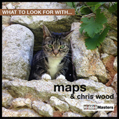 What To Look For With… by Maps