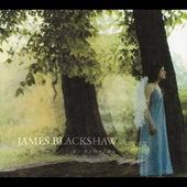Sunshrine by James Blackshaw