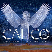 Under Blue Skies by Calico the Band