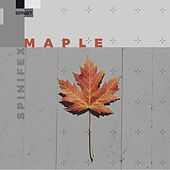 Maple - Single by Various Artists