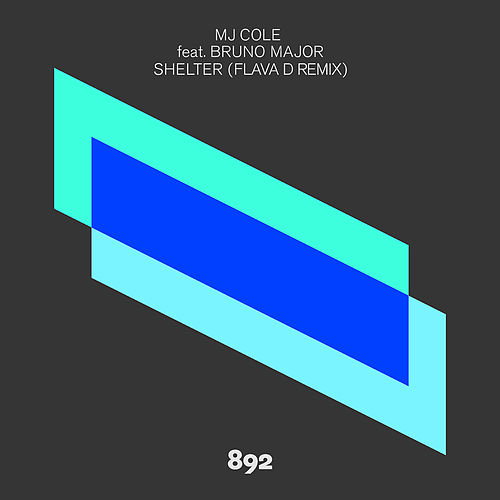 Shelter (Flava D Remix) by MJ Cole