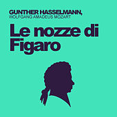 Wolfgang Amadeus Mozart: Le Nozze di Figaro by Gunther Hasselmann