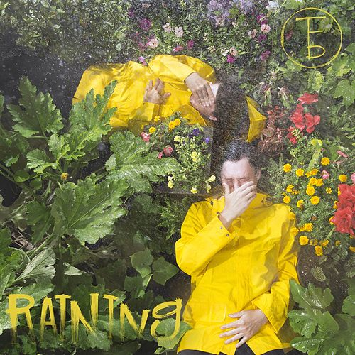 Raining by The Front Bottoms