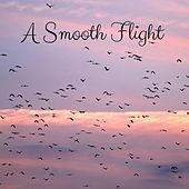 A Smooth Flight by Rain Sounds (2)