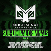Sub-liminal Criminals Volume 1 by Various Artists