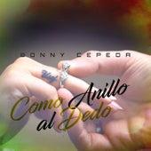 Como Anillo al Dedo by Bonny Cepeda
