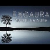 New Divide by Exoaura