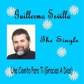 Una Cionita para Ti (Gracias a Dios) by Guillermo Sevilla