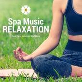 Spa Music Relaxation - Serenity, Zen Meditation, Deep Sleep Inducing & Well Being, Massage, Beauty, Yoga, Healing Nature Sounds for Wellness Center by Spa Sensations