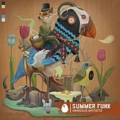 Summer Funk - Single by Various Artists