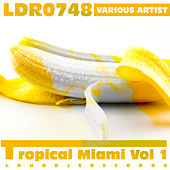 Tropical Miami, Vol. 1 by Various Artists