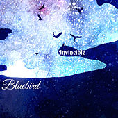 Invincible by Bluebird