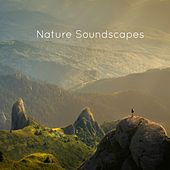 Nature Soundscapes by Nature Sounds for Sleep and Relaxation