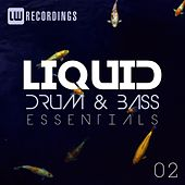 Liquid Drum & Bass Essentials, Vol. 02 - EP by Various Artists