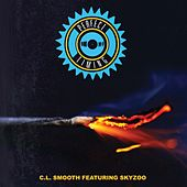 Perfect Timing (feat. Skyzoo) - EP by CL Smooth
