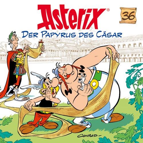 36: Der Papyrus des Cäsar von Asterix