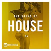 The Sound Of House, Vol. 05 - EP by Various Artists