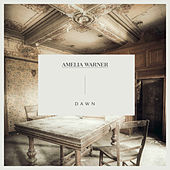 Dawn by Amelia Warner