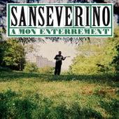 À mon enterrement by Sanseverino