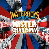 Mister Charisma von The Waterboys