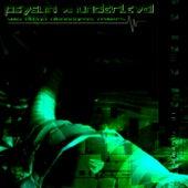 Uma Droga Alucinogena, Remixes by Psysun