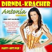 Play & Download Dirndl-Kracher by Antonia Aus Tirol | Napster