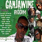 Play & Download Gangawine Riddim by Various Artists | Napster