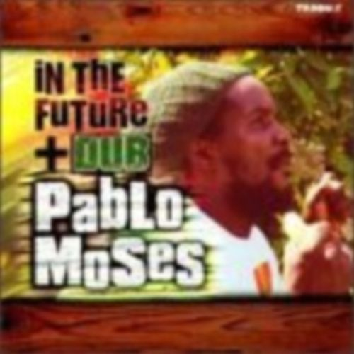 In the Future Dub by Pablo Moses