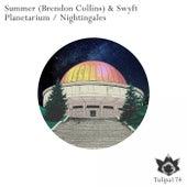 Planetarium / Nightingales - Single by Summer
