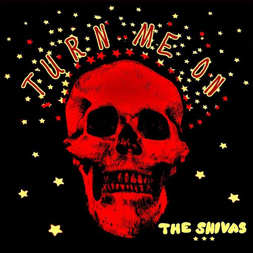 Turn Me On by The Shivas