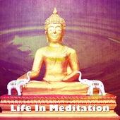 Life In Meditation by Kundalini: Yoga, Meditation, Relaxation