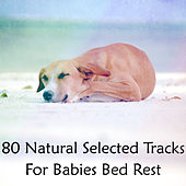 80 Natural Selected Tracks For Babies Bed Rest by White Noise Babies