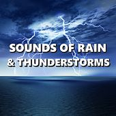 Sounds of Rain & Thunderstorms by Thunderstorm