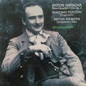 Gatscha, Webern, Puccini by Sinusquartett