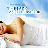 The Lark Ascending Or by Music For Sleep